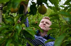 Variable rates and targeted applications boost cider crop productivity