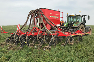 Cover crops – a practical example