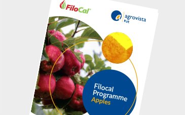 Filocal Programme - Apples