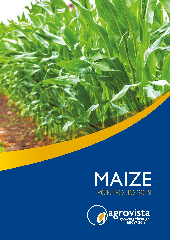 Maize Seed Varieties